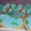 Brush Embroidery Cookie1